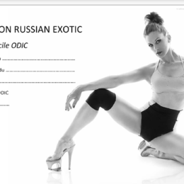 INFO FORMATION RUSSIAN EXOTIC DANCE